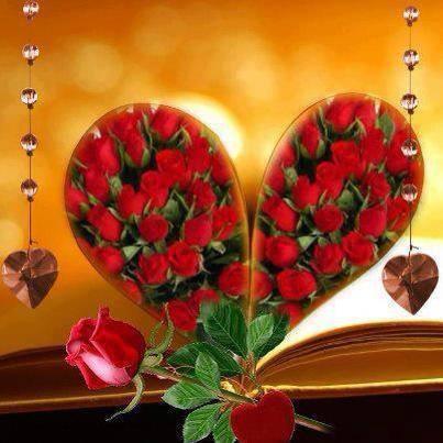 thiep hoa hong dep