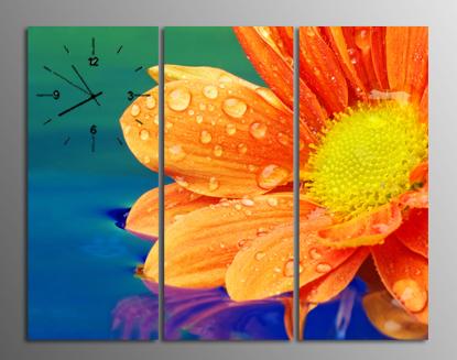 tranh dong ho hoa cuc dep